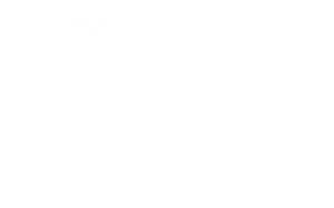 viertelROLLER Logo weiß